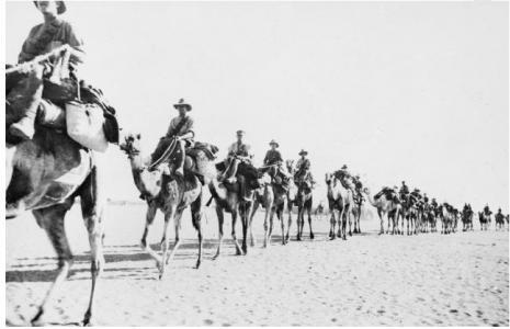 1st Australian Camel Bn. Imperial Camel corps leaving El Kharga 1917. Photo source AWM H0774