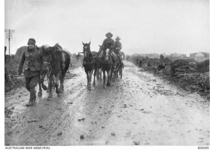 Ammunition packhorses, France, December 1916. Photographer unknown, photograph source AWM E00090