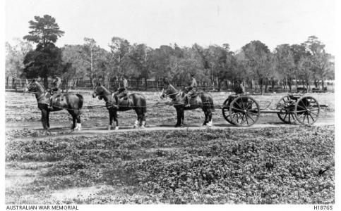 Artillery Training at Maribyrnong, Vic. Photographer unknown, photograph source AWM H18765