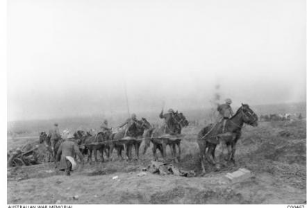 Artillery horses on the Westhoek Road 1917. Photographer Charles Barnes. Photograph source AWM C00467