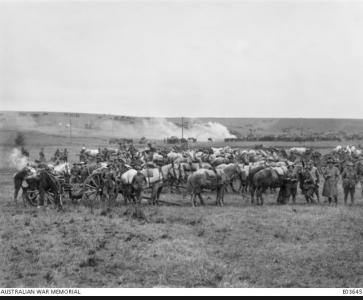 Artillery prepare to support 4th Army Bde October 1918. Photographer unknown, photograph source AWM E03645