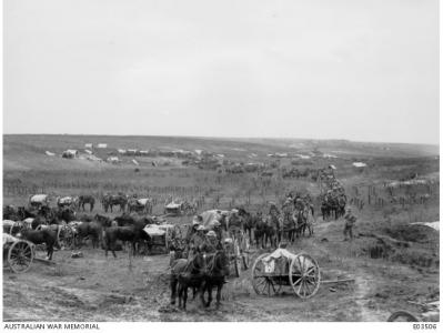 Australian Artillery passing through acaptured section of the Hindenburg Line, Oct. 1918. Photographer unknown, Photograph source AWM E03506