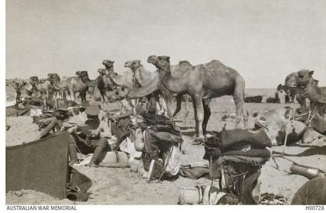 Australian Camel Corps Field Ambulance 1917. Photographer unknown, photograph source AWM H00728