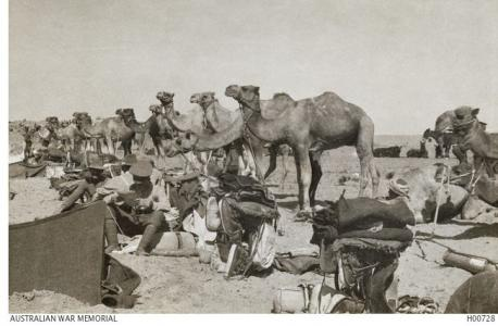 Australian Camel Corps Field Ambulance 1917. Photographer unknown, photograph source AWM H00728