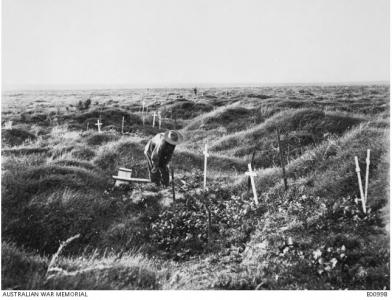 Australian graves at Pozieres  12 months after the battle, 1917.  Photographer unknown, photograph source AWM E00998