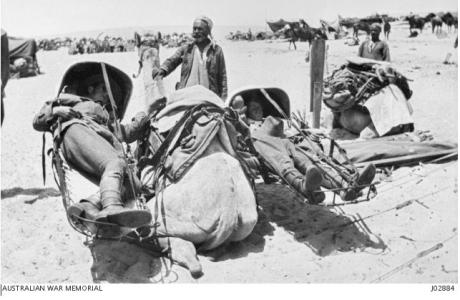 Camel ambulance showing the cacolets for carrying the sick and wounded. Photograph donor F.H. Smith, photograph source AWM J02884