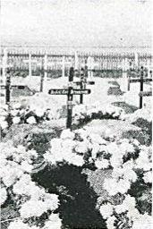Demasson H.P. Grave. Palmer and Ashworth (1922) Facs.Ed. Photograph reproduced with permission of Hesperian Press, pub Vic.Park WA. 2014 p80