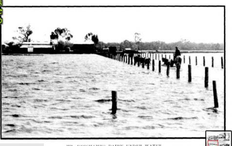 Deschamps Dairy at Caversham nr. Guildford - 1915 floods. Photo source Western Mai 13.8.1915 p3