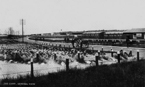 Durrington Camp, Salisbury Plains, general view. Photograph source  Saxlingham Memorials webpage