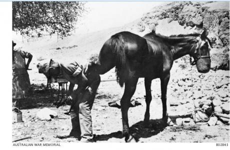 Farrier Smith Light Horse Jordan. Photographer unknown, photograph source AWM B02643