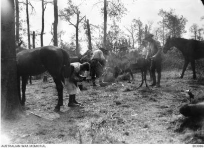 Farriers at their improvised smith work shop near Moricourt 1918. Photographer unknown, photograph source AWM E03086