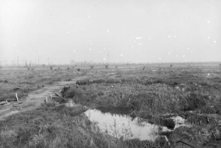Fromelles- no man's land 1916. Photographer unknown, photograph source AWM E04030
