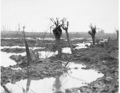 Ground around Zonnebeke October 1917. Photographer unknown, photograph source AWM E01200