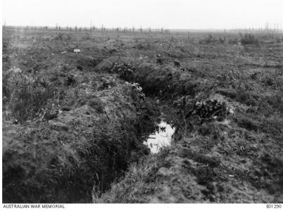 Messines Ridge 1917. Photographer unknown, photograph source AWM E01290