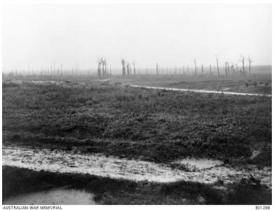 Messines, showing winter trenches 1917. Photographer unknown, photograph source AWM E0128