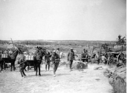 Pack mules supplying ammunition to the Artillery at the front lines, France1916. Official  British War photographer, photograph source  AWM EZ013