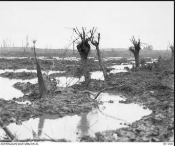 Passchendaele 1917. Photographer unknown, photograph source AWM E01200