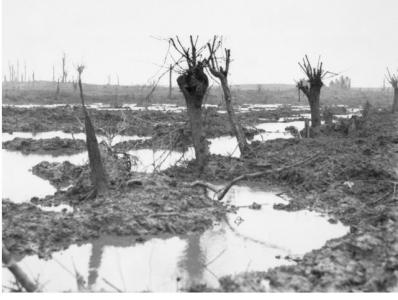 Zonnebeke, First Battle of Passchendaele. Photographer unknown, photographer sourced AWM E01200
